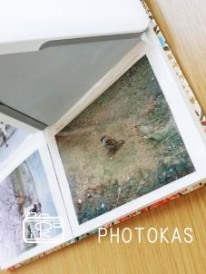アルバムの写真整理、できていますか?03_新講座のおしらせ_写真整理のphotokas