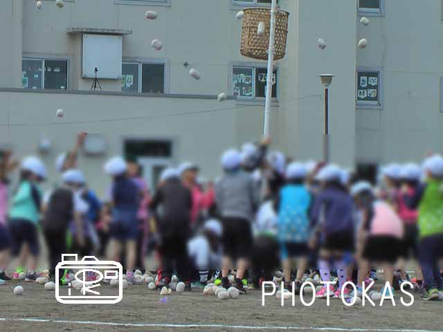 運動会の写真もすぐにすっきり整理!03_写真整理のPHOTOKASフォトカス